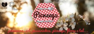 Picneequ